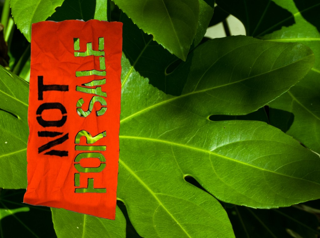 Not For Sale: The Air We Breathe